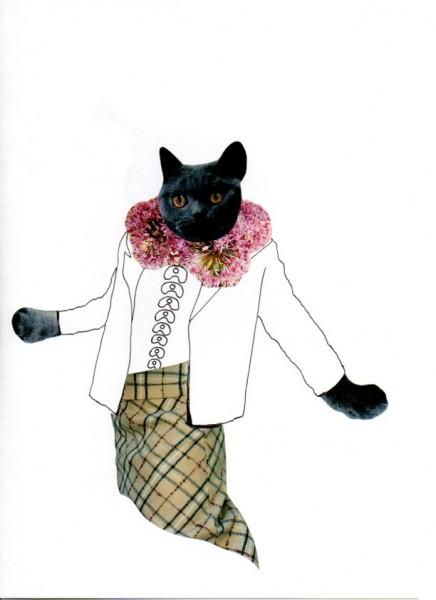 O.T. (Katze)